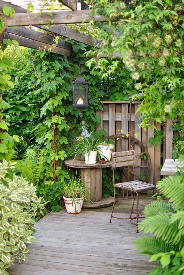 Shady Garden Dining Corner with Vines