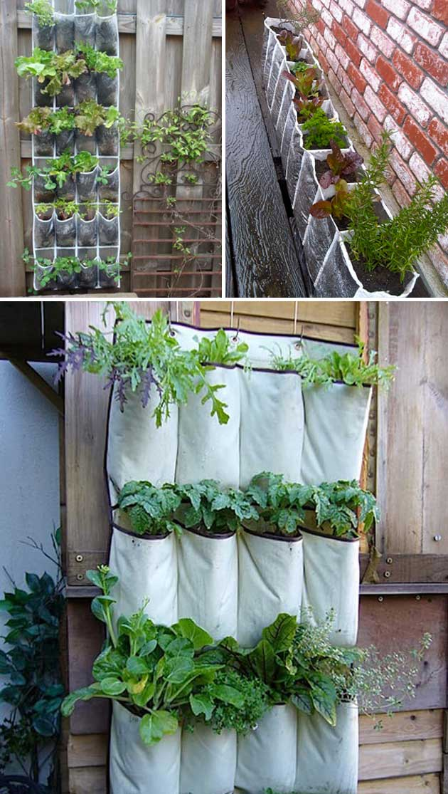 Repurpose a shoe organizer as a planter | Clever Gardening Ideas on Low Budget