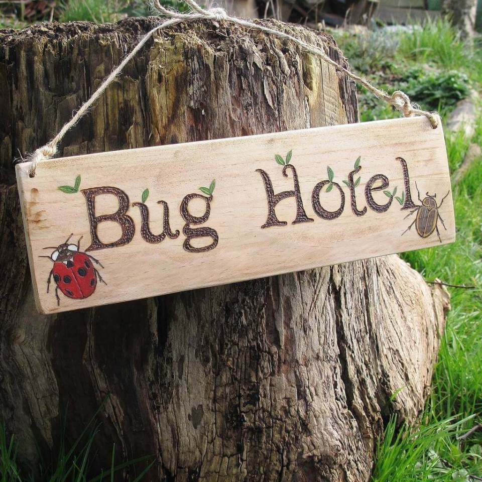 Funny Sign for an Old Stump | Funny DIY Garden Sign Ideas