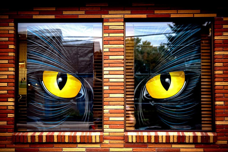 Always Watching | DIY Halloween Window Decoration Ideas