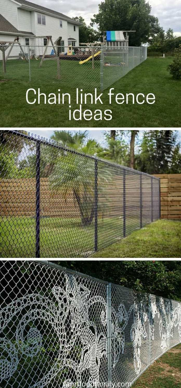 Cheap chain link fence ideas