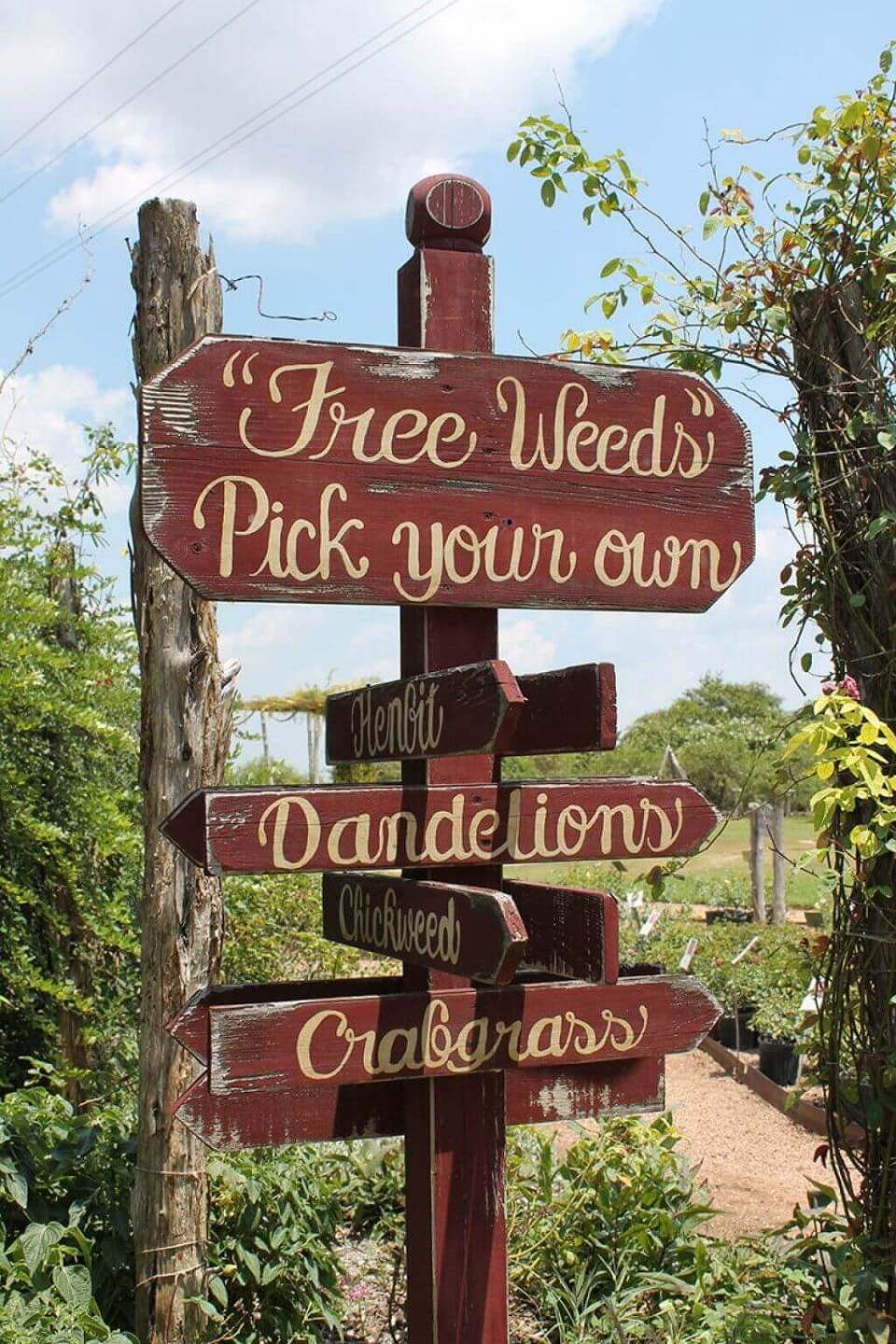 Where in the World are the Weeds?   Funny DIY Garden Sign Ideas