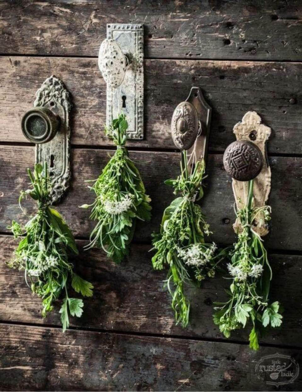 Vintage Garden Decor Ideas: Antique Doorknob Flower and Herb Drying Display