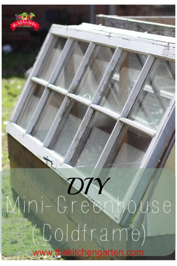 A Coldframe Green House with Easy Access | Build a beautiful outdoor greenhouse | Creative Greenhouse DIY plans