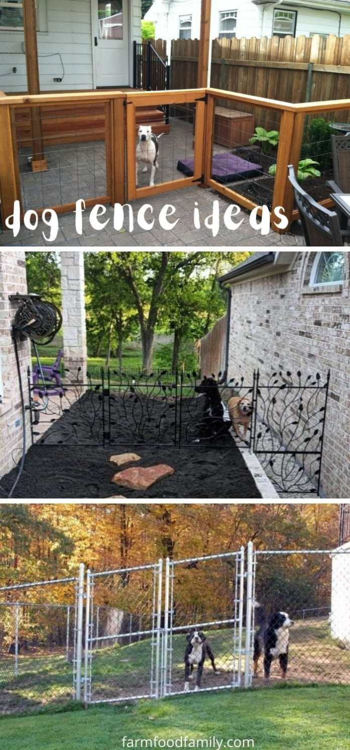 65+ Cheap and Easy DIY Fence Ideas For Your Backyard, or ...