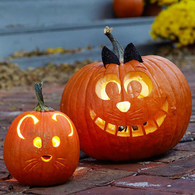 DIY Pumpkin Carving Ideas: Cute And Cuddly Faces