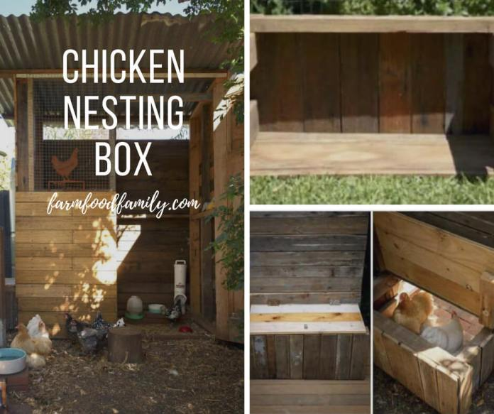 Chicken nesting boxes designs
