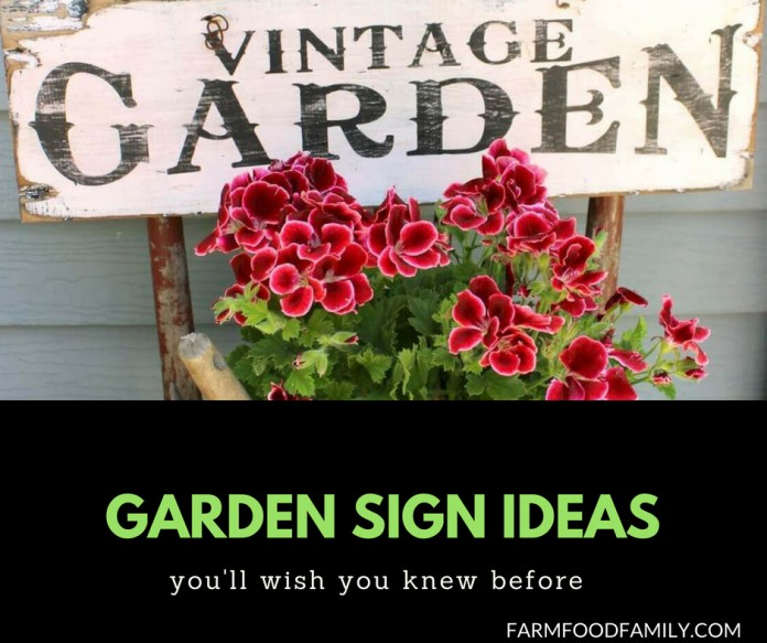 37+ Funny DIY Garden Sign Ideas