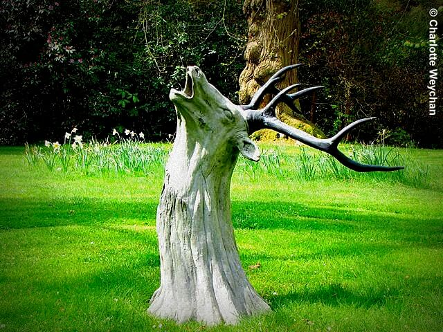 Tree Stump Garden Decor and Sculpture | Tree Stump Decorating Ideas | How To Decorate a Tree Stump In Landscape
