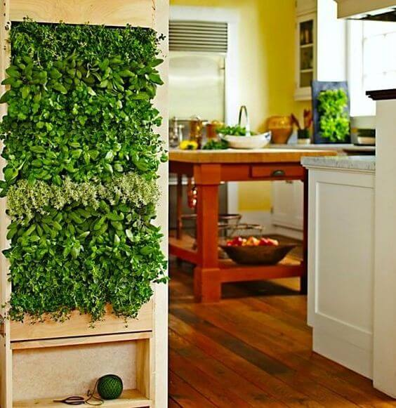 Green Wall | Smart Mini Indoor Garden Ideas DIY - FarmFoodFamily.com