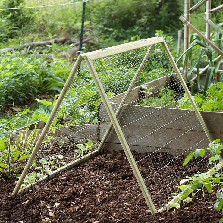 DIY garden trellis | Up-cycled Trellis Ideas For Garden
