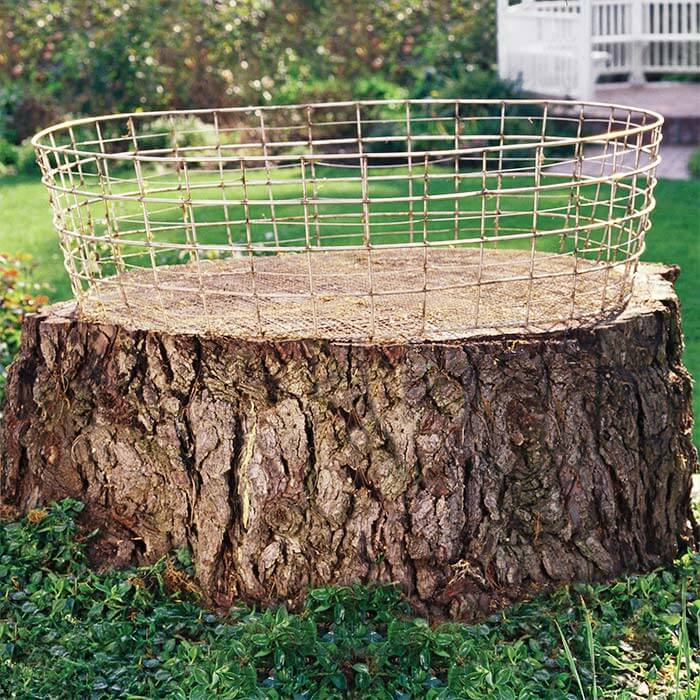 A Container Garden On A Tree Stump | Tree Stump Decorating Ideas | How To Decorate a Tree Stump In Landscape