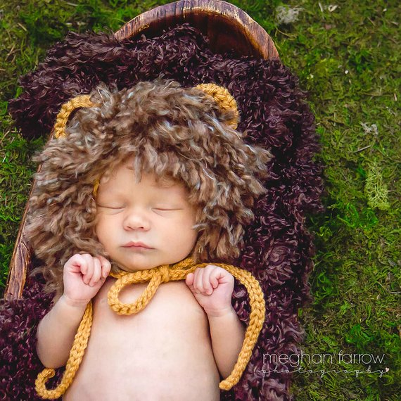Baby Lion Costume | Animal Halloween Costumes for Kids, Adults - FarmFoodFamily.com