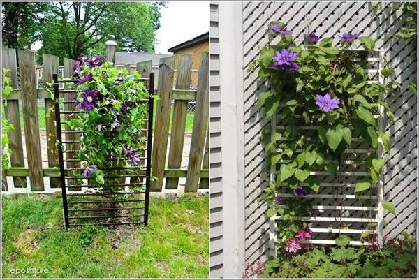 Crib Trellis | Up-cycled Trellis Ideas For Garden