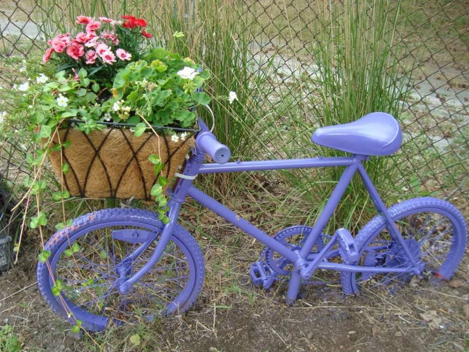 Purple Bike | Bicycle Garden Planter Ideas For Backyards | FarmFoodFamily