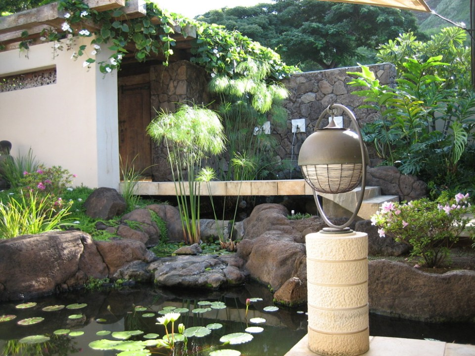 Pond in your garden | Zen Garden Designs & Ideas
