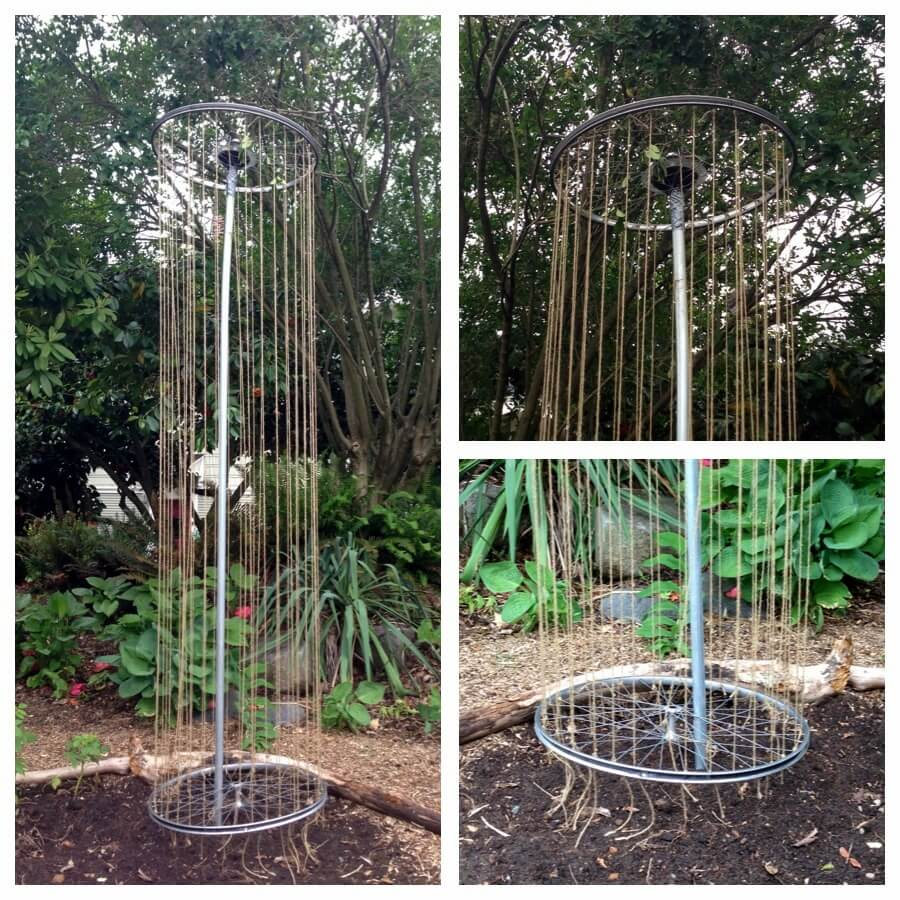Bicycle Wheel Trellis | Up-cycled Trellis Ideas For Garden