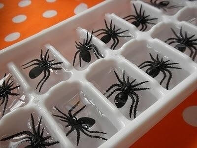 Spider Ice Cubes | Last-Minute Halloween Crafts and Hacks | FarmFoodFamily.com