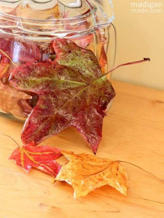 Preserve fall leaves | DIY Fall-Inspired Home Decorations With Leaves - FarmFoodFamily