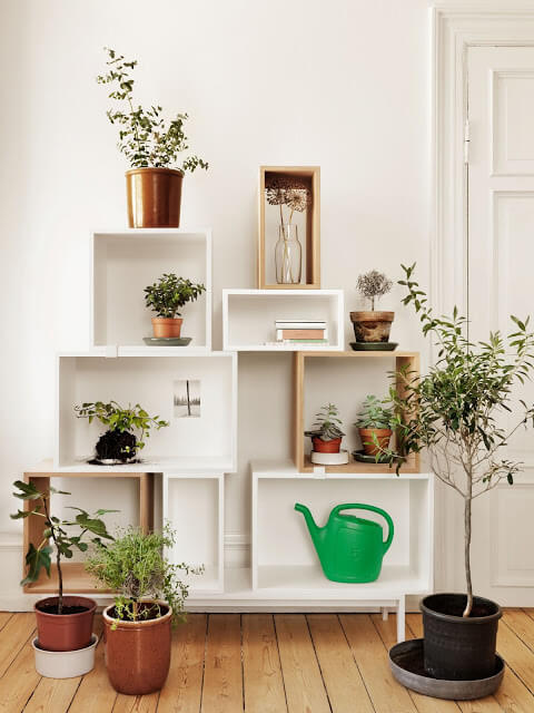 Open shelves | Smart Mini Indoor Garden Ideas DIY - FarmFoodFamily.com