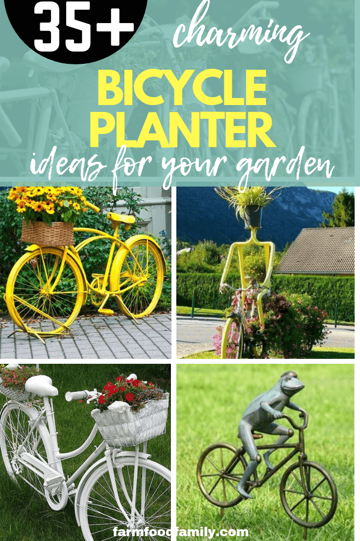 Charming Bicycle Planter Ideas For Your Garden