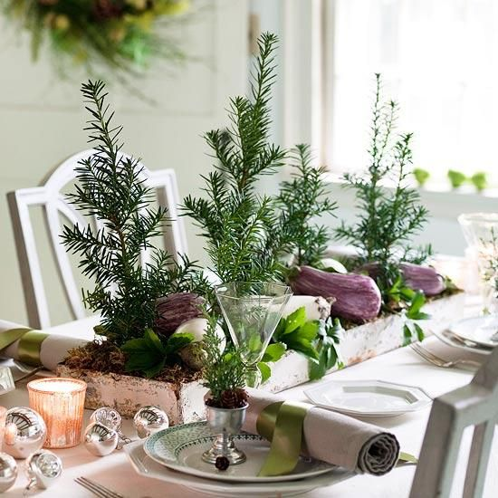 Simple Christmas Centerpieces with houseplants