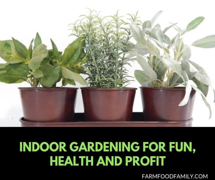 Indoor gardening for fun, health, and profit