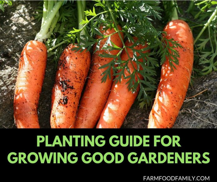 Planting guide for growing good gardeners