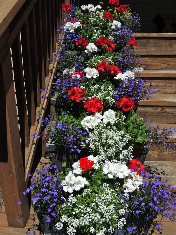 Peppy Planters   Flower Garden Ideas for Containers and Windowboxes