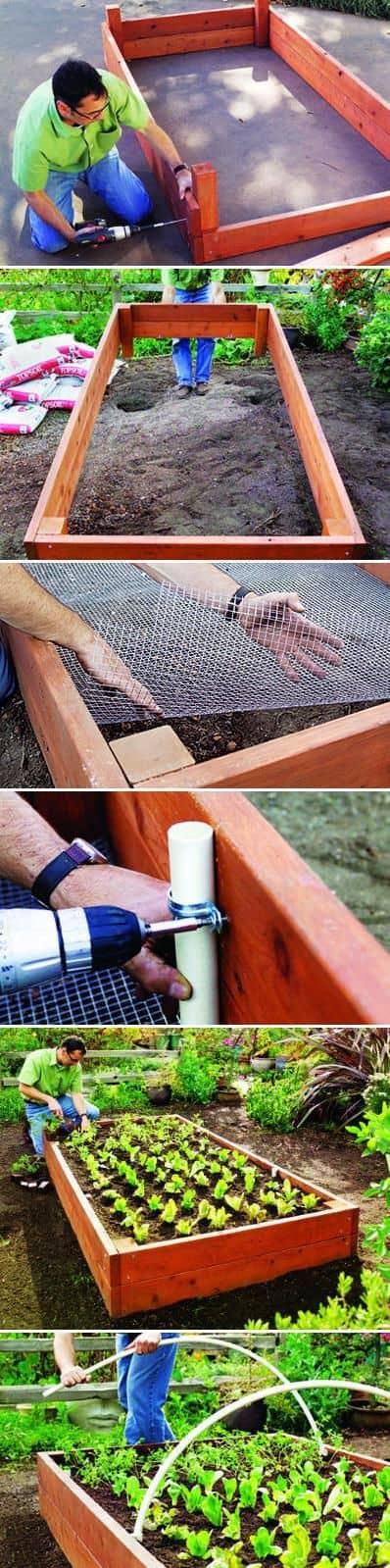 Raised Bed assemble   How to Build a Raised Vegetable Garden Bed   39+ Simple & Cheap Raised Vegetable Garden Bed Ideas - farmfoodfamily.com