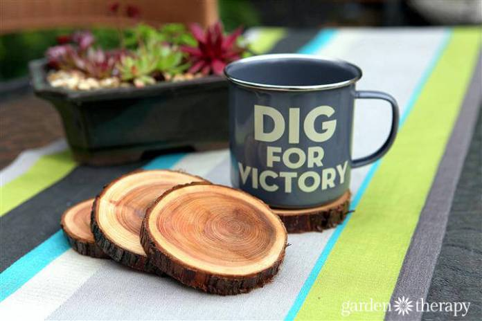 Natural Branch Coasters | DIY Wood Tree Log Decor Ideas - FarmFoodFamily.com