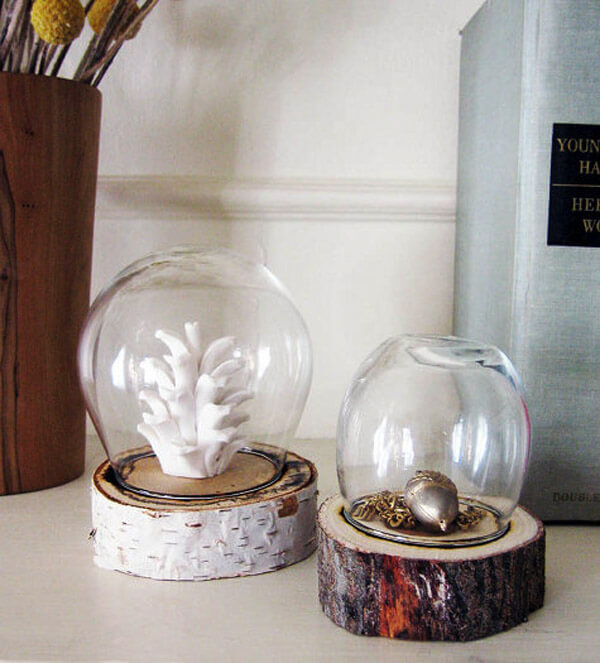 DIY Log Dome Display Jar | DIY Wood Tree Log Decor Ideas - FarmFoodFamily.com