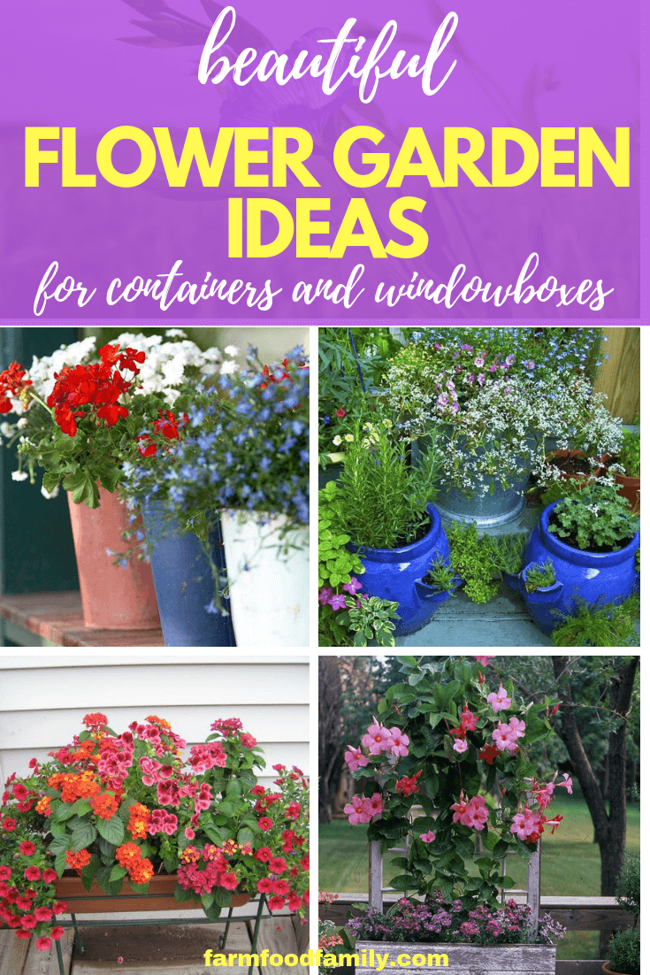 Flower Garden Ideas for Containers and Windowboxes