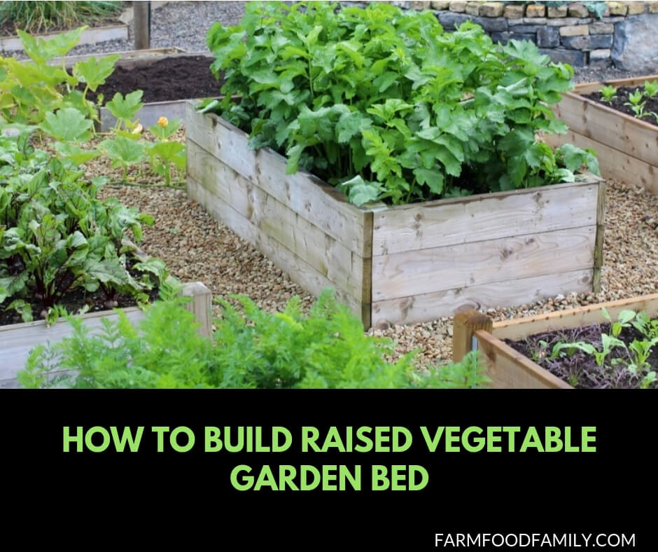How to Build a Raised Bed Vegetable Garden