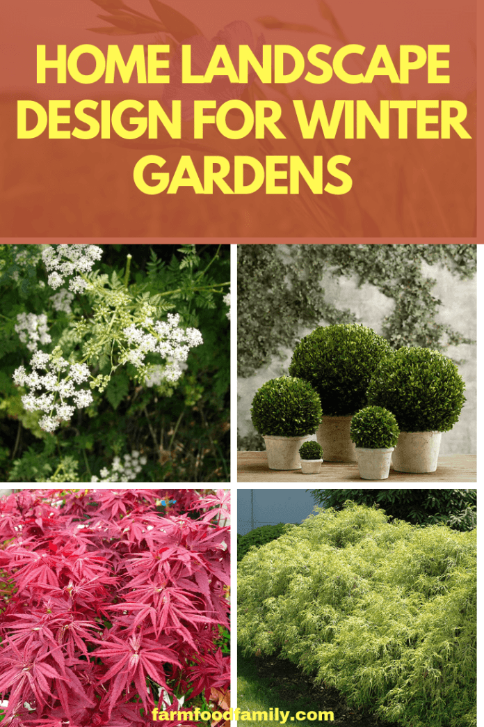Home Landscape Design For Winter Gardens