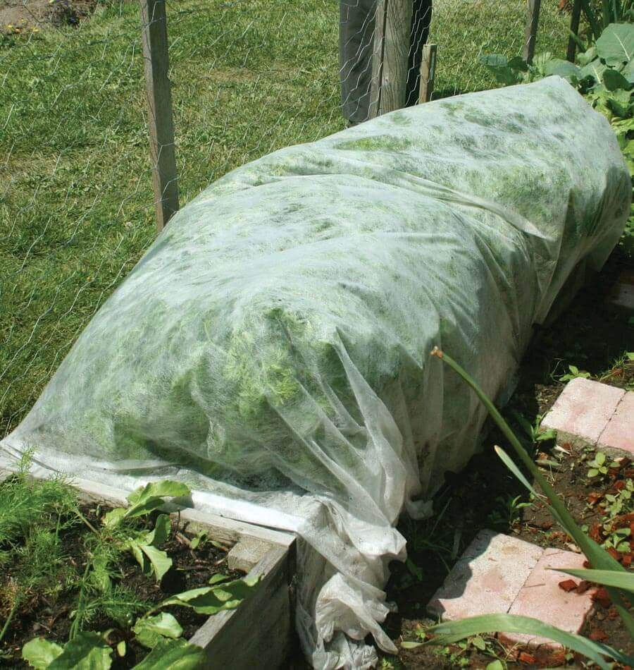 Lightweight floating row cover for insect protection