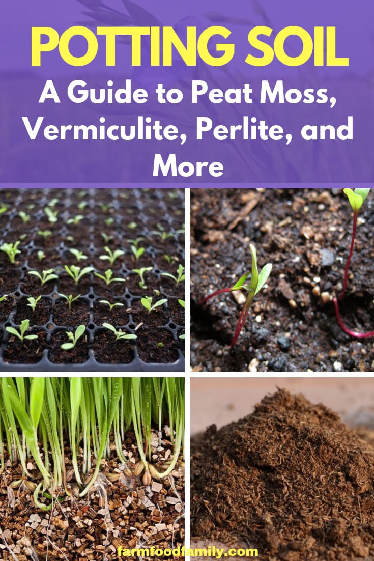 All About Potting Soil: A Guide to Peat Moss, Vermiculite, Perlite, and More