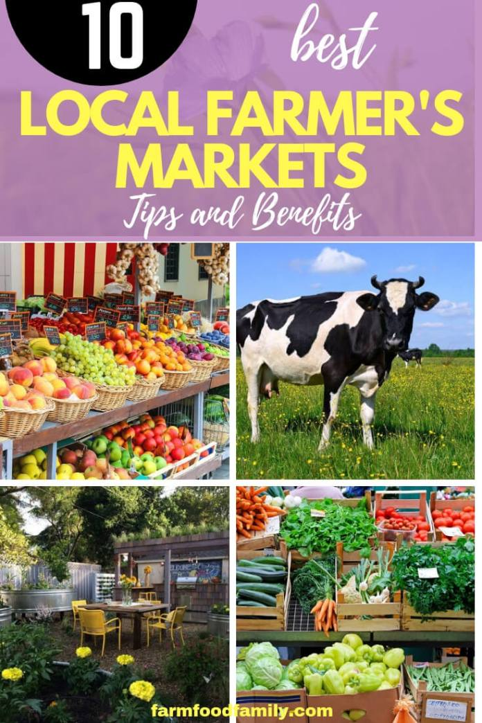 Local Farmer's Markets Tips And Benefits