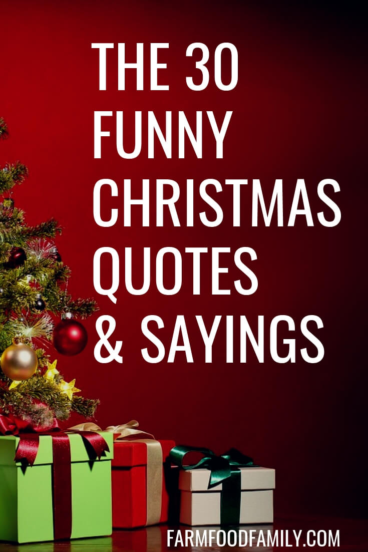 Best Christmas Cards, Messages, Quotes, Wishes, Images ... |Really Funny Christmas Quotes