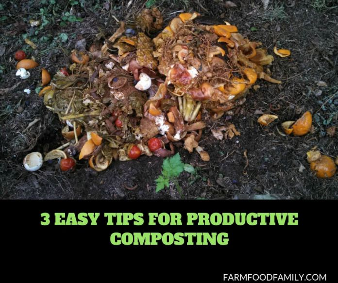 How to Maintain a Healthy Compost Pile and Accelerate Decomposition