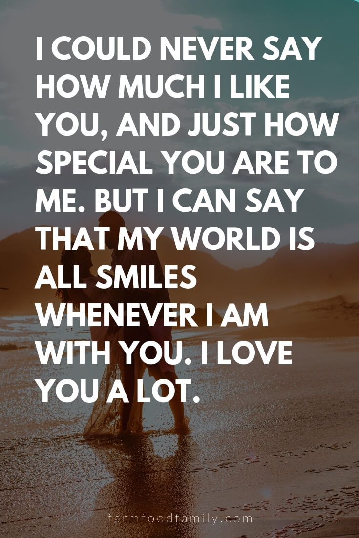 Cute, Funny, and Sweet Love Quotes For Him | I could never say how much I like you, and just how special you are to me. But I can say that my world is all smiles whenever I am with you. I love you a lot.