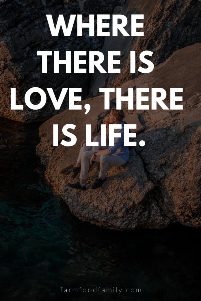 Cute, Funny, and Sweet Love Quotes For Him   Where there is love, there is life.
