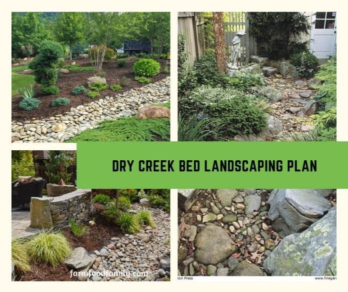 Dry Creek Bed Landscaping Plan