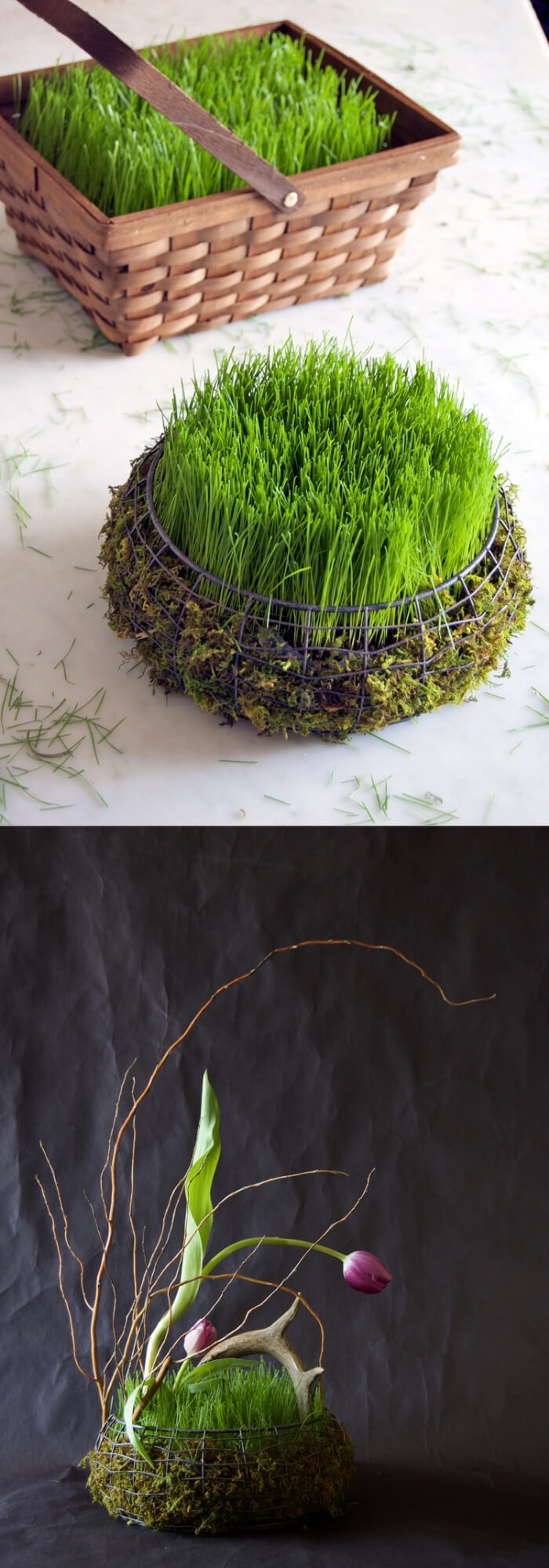 Easter basket filled with grass in 5 days | Creative Easter Garden Projects & Ideas Your Kids Will Love