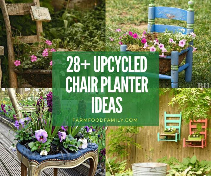 Creative upcycled chair planter ideas for your garden