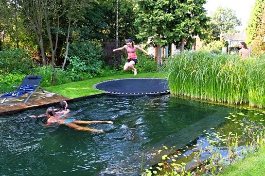 Replace the diving board with a trampoline | DIY Backyard Projects For Summer | FarmFoodFamily