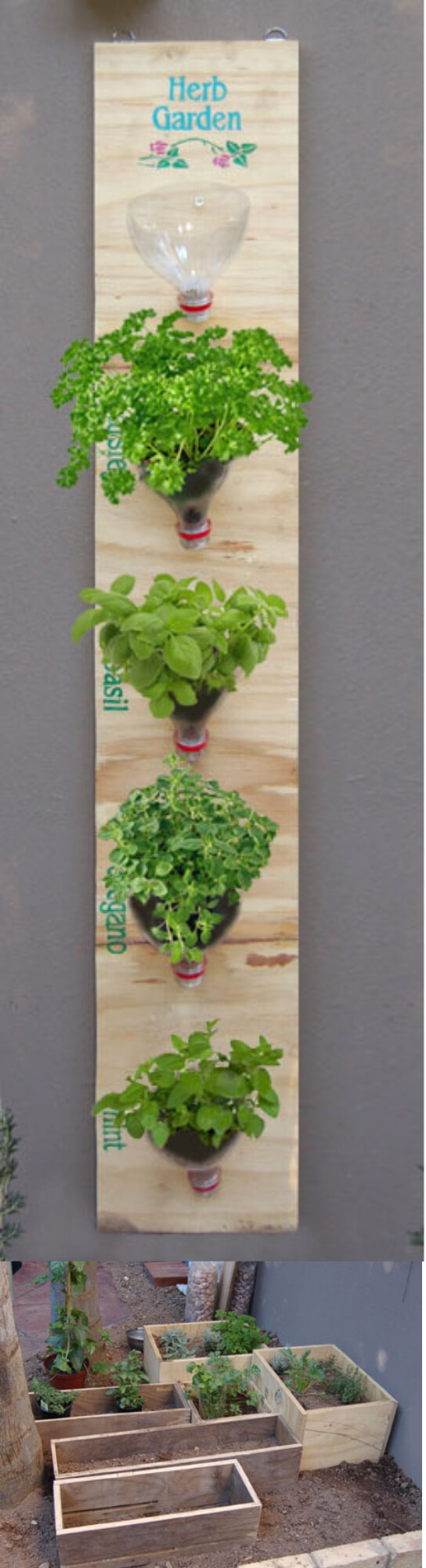 Make a hanging herb garden