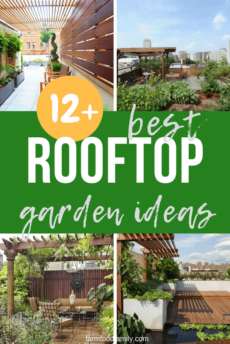 Best Rooftop Garden Designs  & Ideas