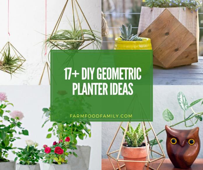 best diy geometric planter ideas
