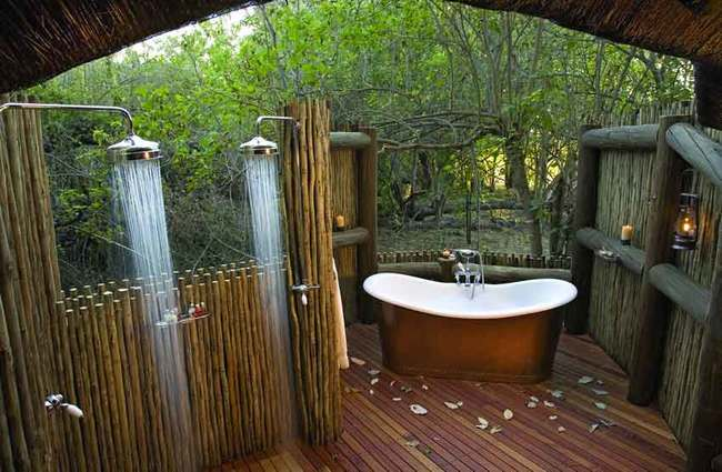 outdoor bathroom in the middle of the forest